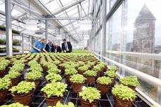 Bild: Blick ins Dachgewächshaus. (Foto: OGM)