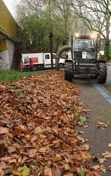 Bild: Dem Laub wird wieder eine Abfuhr erteilt....(Foto: WBO GmbH)