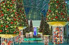 Bild: 350.000 LED-Lichter, 70.000 Weinachtskugeln und 8.000 Meter Tannengirlanden müssen angebracht werden.
